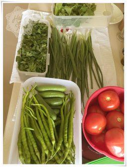 Bir haftalık sebze/salata hazırlığı