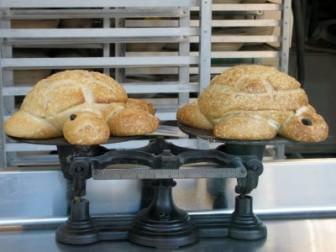 Kaplumbağa Ekmekler